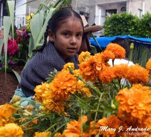 Niña rodeada con flores de cempasúchitl.