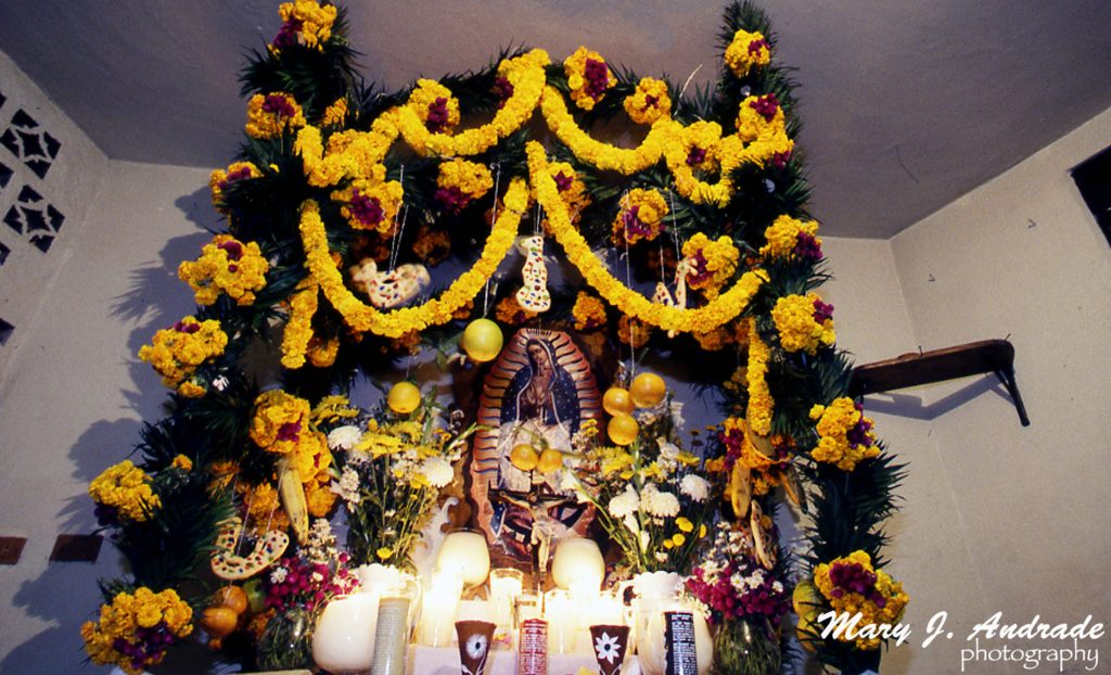 La Ofrenda En La Huasteca Hidalguense Day Of The Dead In